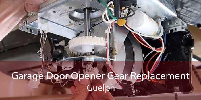 Garage Door Opener Gear Replacement Guelph